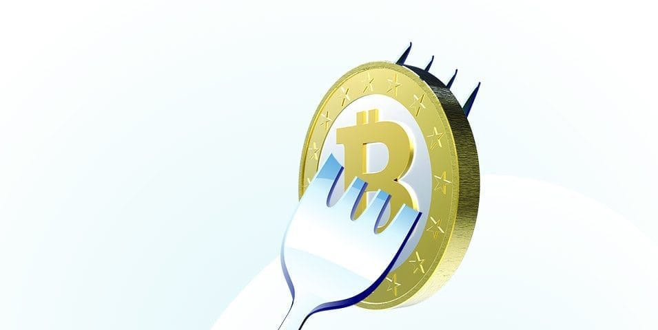 Questions and Comments Concerning 2017 Bitcoin Fork | Crypto News